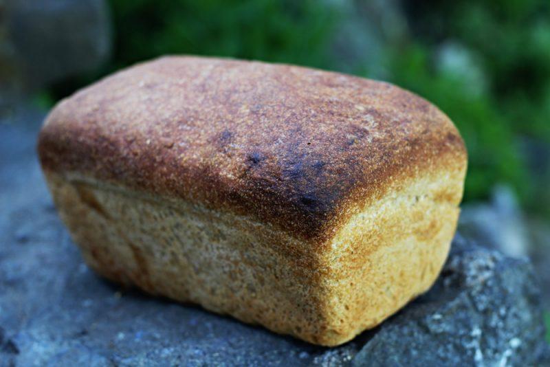 toastovy
